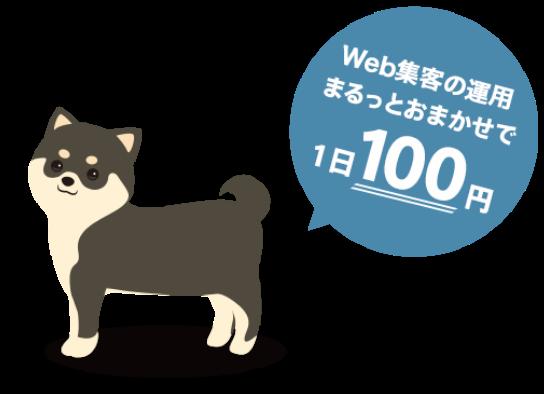 ワンコインからできる、web集客代行サービスWANCO